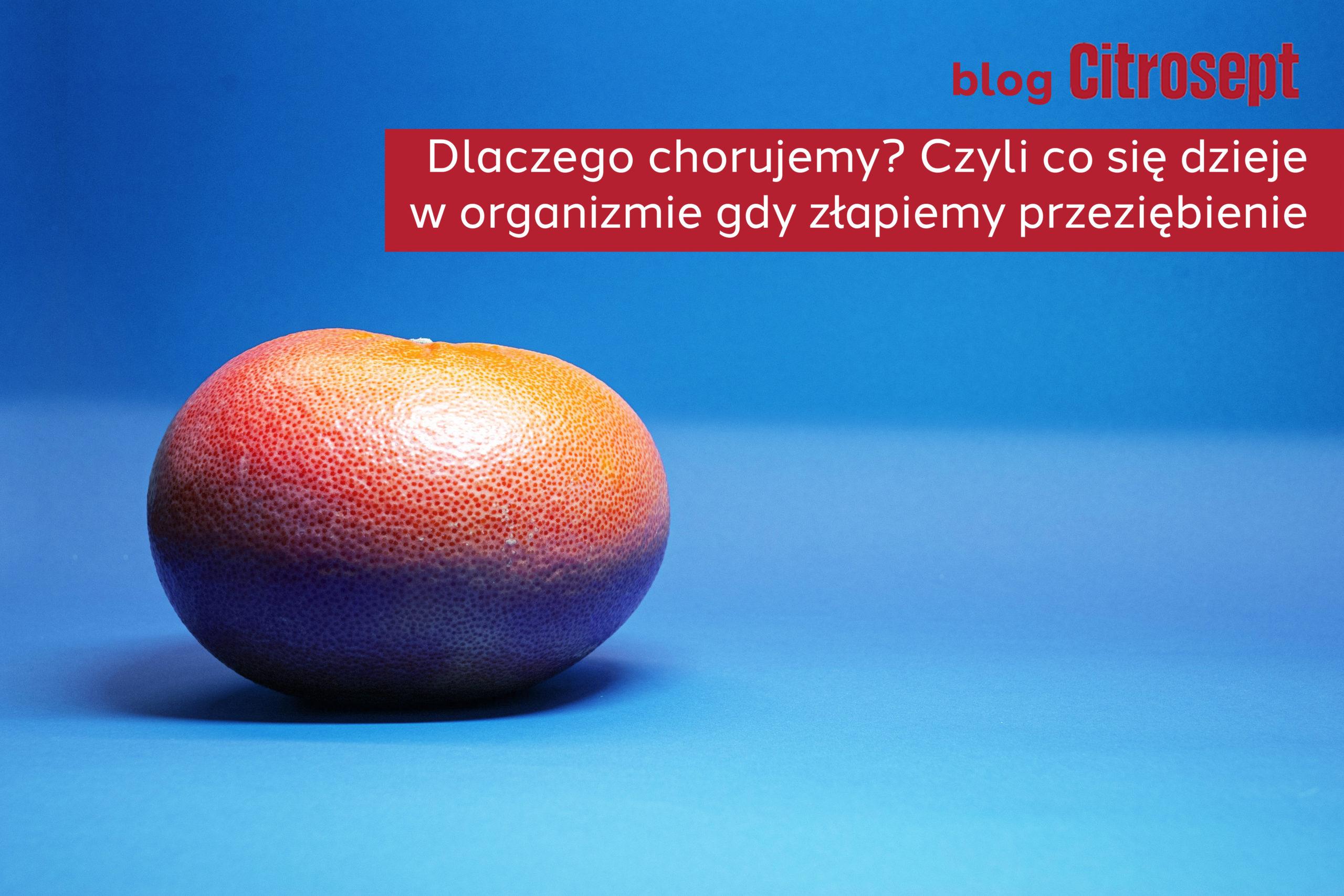citro_blog_przeziebienie_czemu